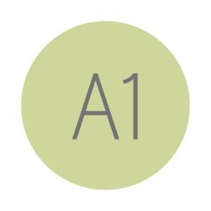 Hiszpański A1