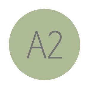 Hiszpański A2