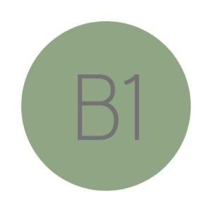 Hiszpański B1